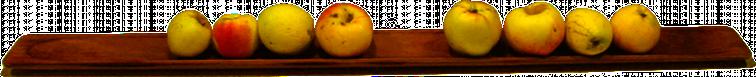 4+4 Äpfel