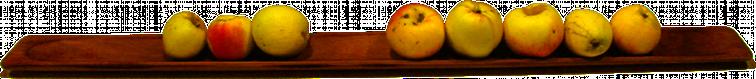 5+3 Äpfel